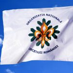 Steaguri şi drapele